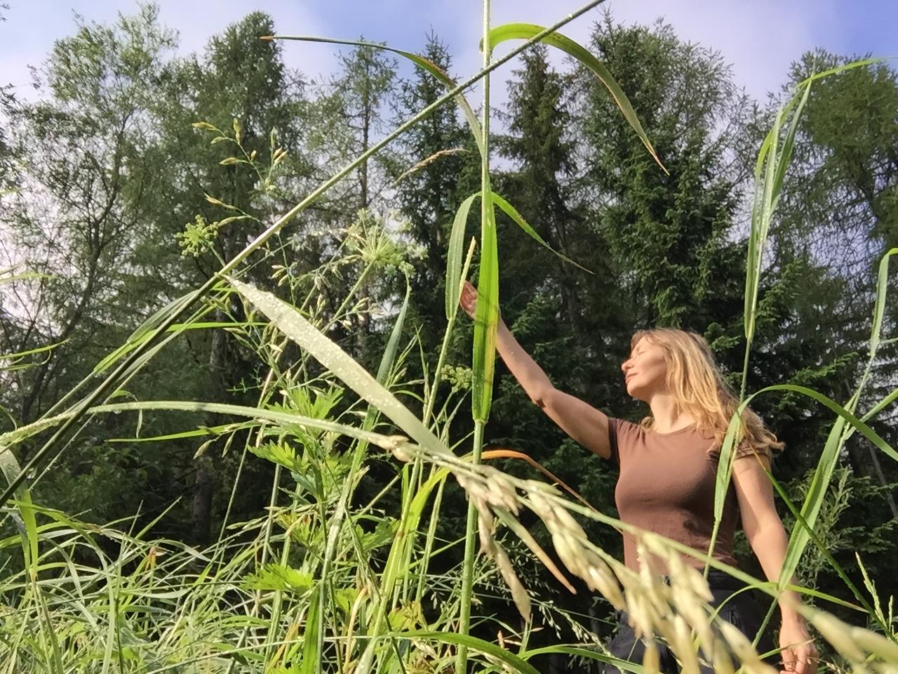 Late summer forest walks – Spätsommerliche Waldspaziergänge